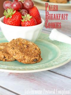 Guest Post, Against All Grain: Paleo Breakfast Cookies