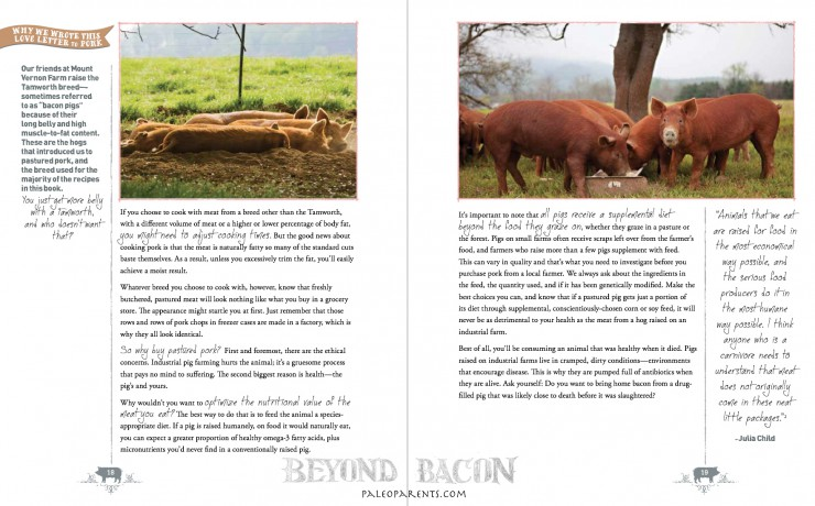 Love Letter to Pork from Beyond Bacon by PaleoParents