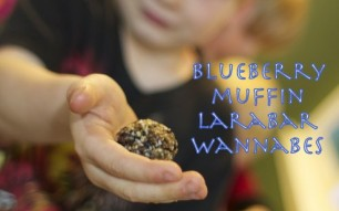 Review, Cole: Steve's Original Rocks – Blueberry Muffin LaraBar Wannabe Nut-free Recipe