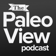 TPV Podcast, Episode 39: Gut Health