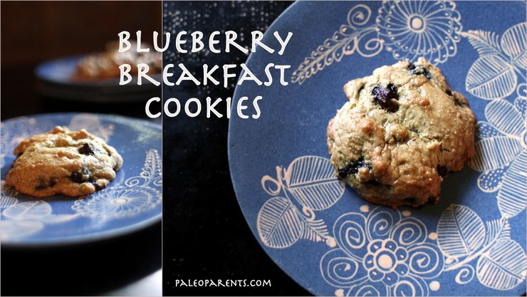 Blueberry Breakfast Cookies at PaleoParents, Eats from the Web: Our Weekly Family Meal Plan + LIVE Soda Kombucha Giveaway! Paleo Parents
