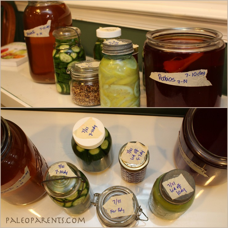 Fermented Foods by PaleoParents
