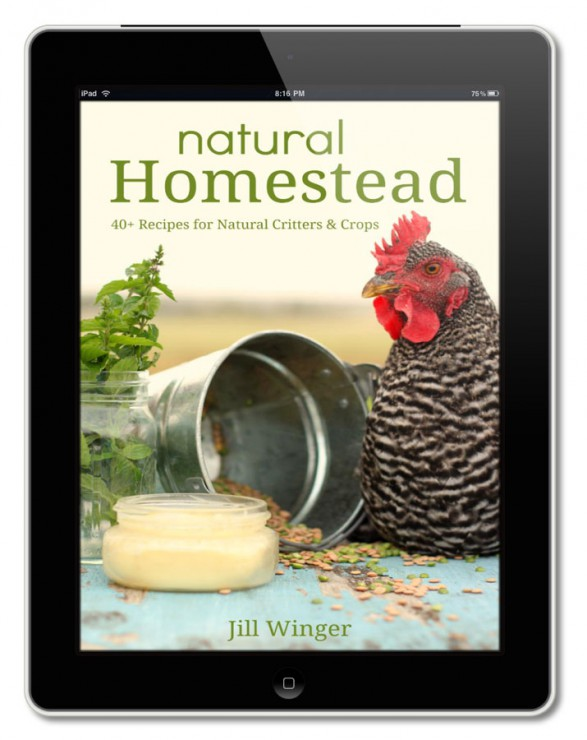 jill_winger_natural_homestead