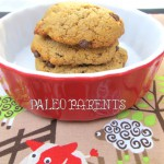 Chocolate Chip Cookies from Eat Like a Dinosaur by PaleoParents