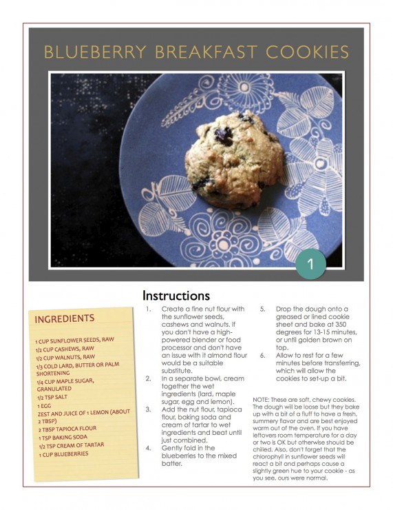 Blueberry Breakfast Cookies from 3 Phase Paleo by Paleo Parents