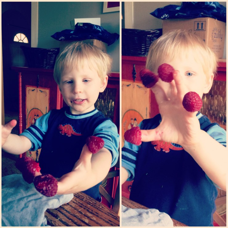 Wes Loves Raspberries on PaleoParents