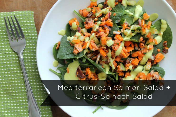 salmon salad arial with words