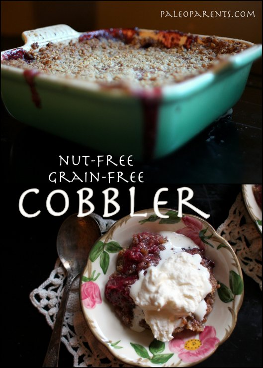 Cobbler-at-PaleoParents