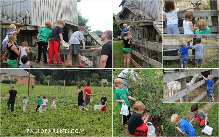 Larriland Farm with Friends for Fruit Pizzas on Paleo Parents