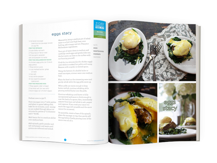 21DSD-PaleoPar-cookbook-spread