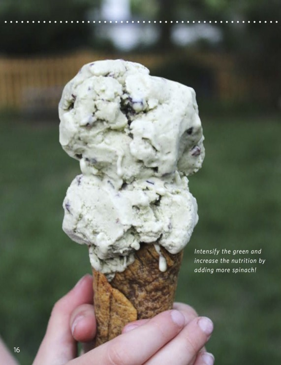Review and a Recipe: We Can All Scream for Ice Cream! With Mint Chip Ice Cream Recipe