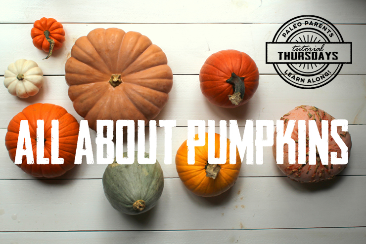 All About Pumpkins on Tutorial Thursday by PaleoParents