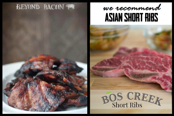 Bos Creek Short Ribs, Paleo Parents Asian Short Ribs