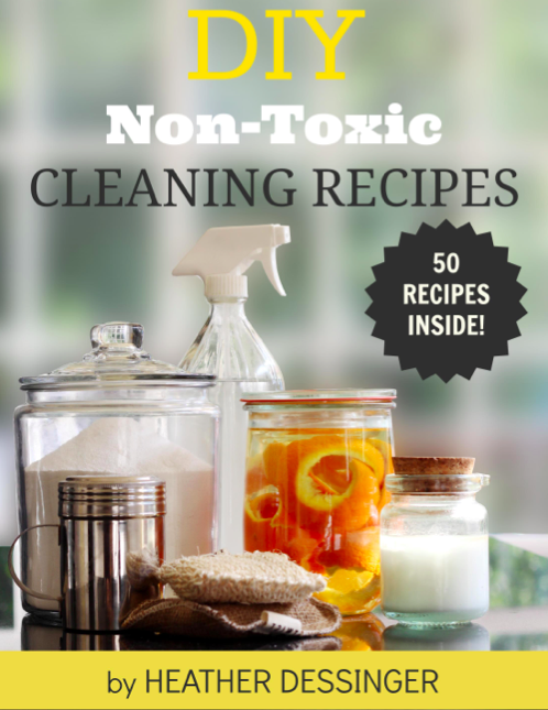 DIY Non-Toxic Cleaning Recipes, Family Resolution Revolution Bundle