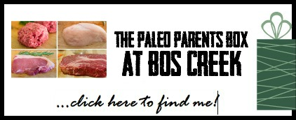Gift Guide Bos Box Pic 2, Paleo Parents 2014 Christmas