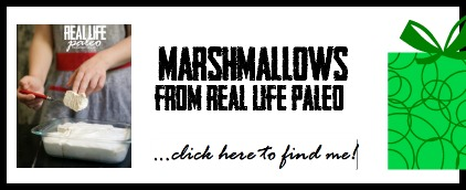 Gift Guide Marshmallows Pic, Paleo Parents 2014 Christmas