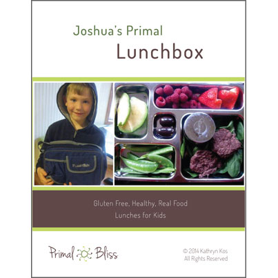 Family Resolution Revolution – Joshua's Primal Lunchbox