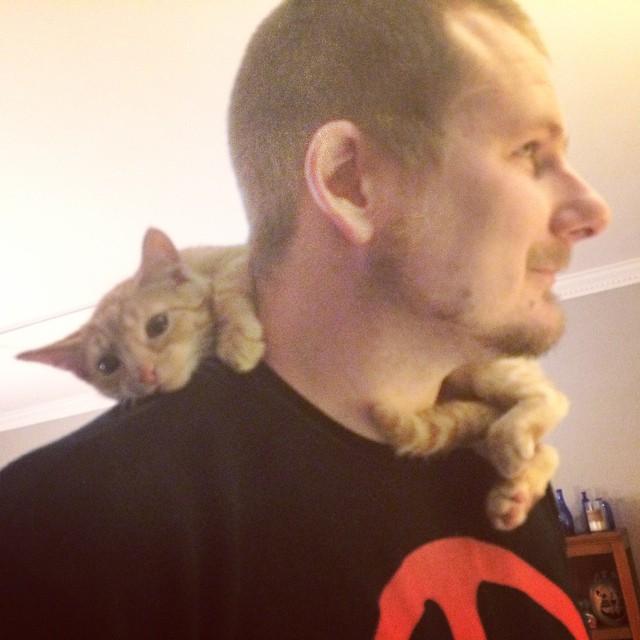 Cat Scarf, Paleo Parents