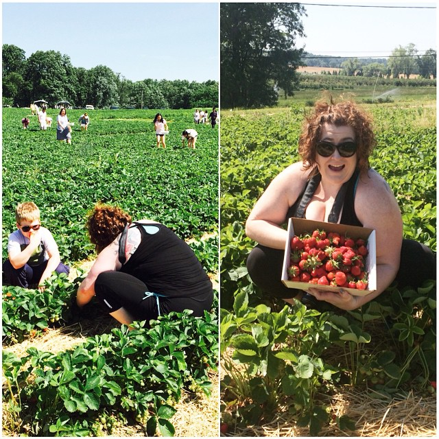 Strawberry picking, Paleo Parents Weekend Wrap Up 5.31: Why Our 9yo Drinks Coffee Plus A Week Of Relaxation And Tutorial On Paleo Pots!