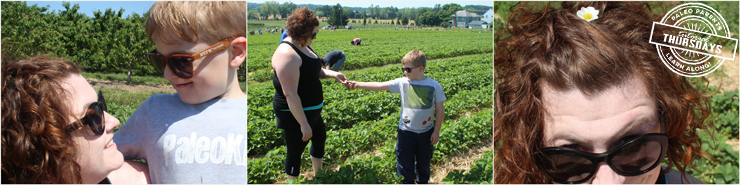 Strawberry Farm on Paleo Parents