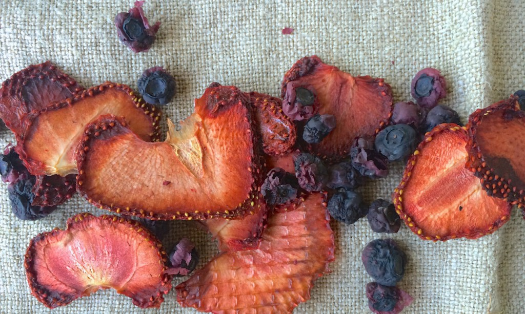 Dried Fruit, Guest Post: Simple & Easy Preserving, Whole-Fed Homestead- Beginner's Guide to Dehydrating, Freezing and Fermenting