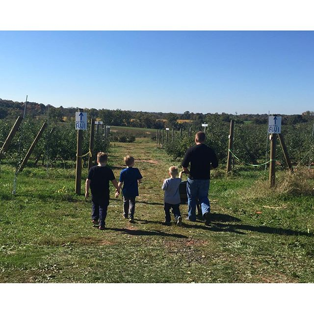 family apple pickin, Our BEST Cinnamon Recipes! Paleo Parents Weekend Wrap Up