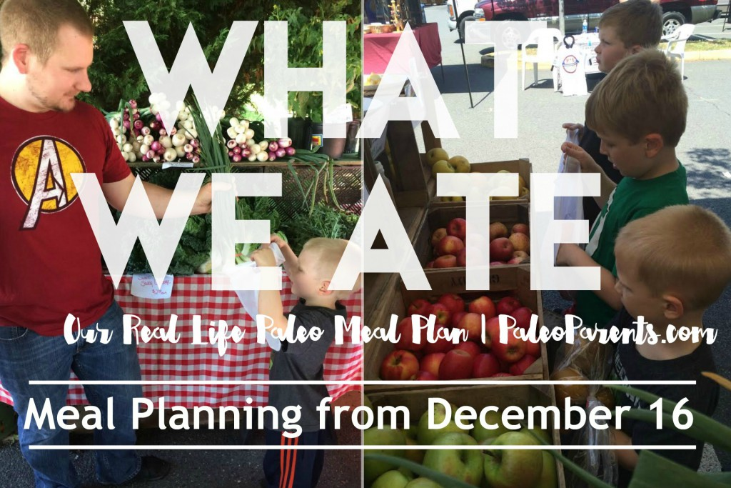 AIP TACO BOWL Recipe + Paleo Parents Real Life Meal Planning: What We Ate Wednesday December 16