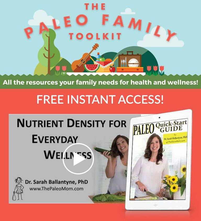 Free Webinar Paleo Mom Nutrient Density