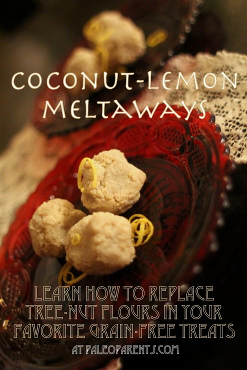Coconut Lemon Meltaways with Sunflower Seed Flour by PaleoParents