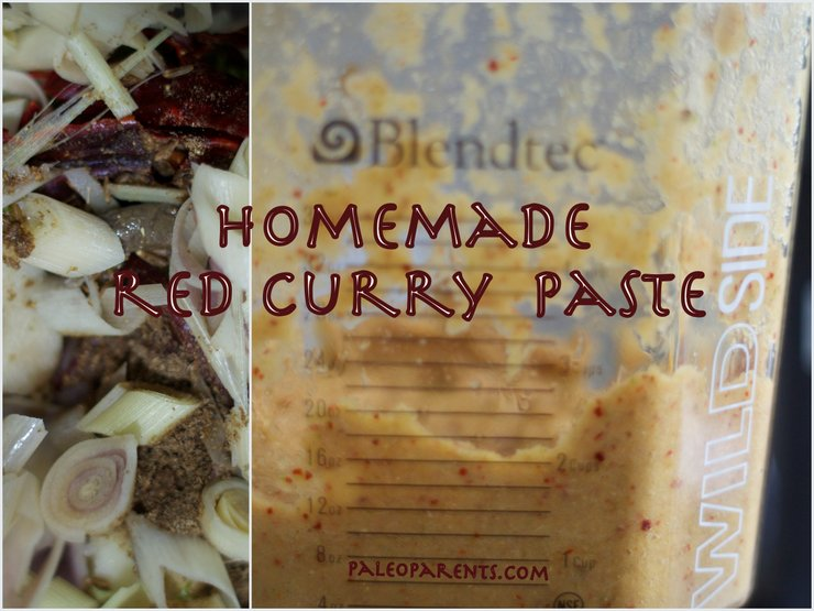 Homemade Red Curry Paste by PaleoParents