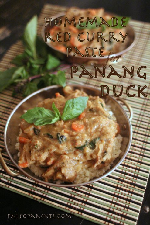Panang Duck by PaleoParents