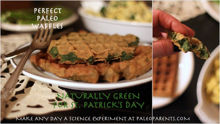 ELaD Naturally Green Perfect Paleo Waffles at PaleoParents, Paleo Parents Weekend Wrap Up, 3/15: GIVEAWAY, CRAZY COUPONS, An ANNOUNCEMENT And WHAT Cole Is Cooking!