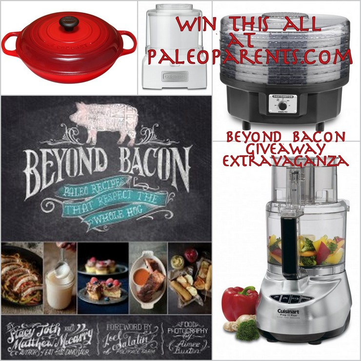 Tools for Success Giveaway for BeyondBacon at PaleoParents