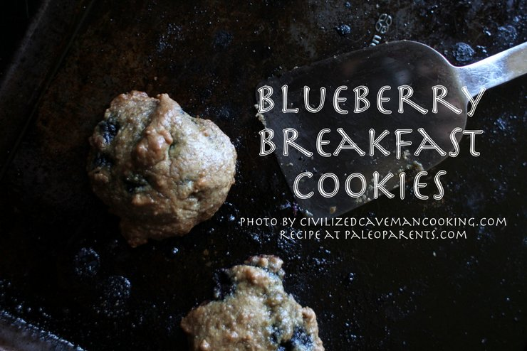 Blueberry Breakfast Cookies by PaleoParents and CivilizedCaveman