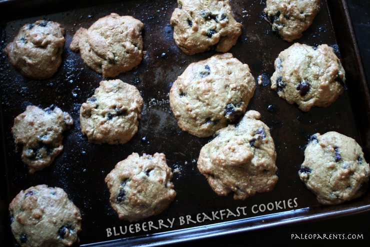 Blueberry Breakfast Cookies by PaleoParents