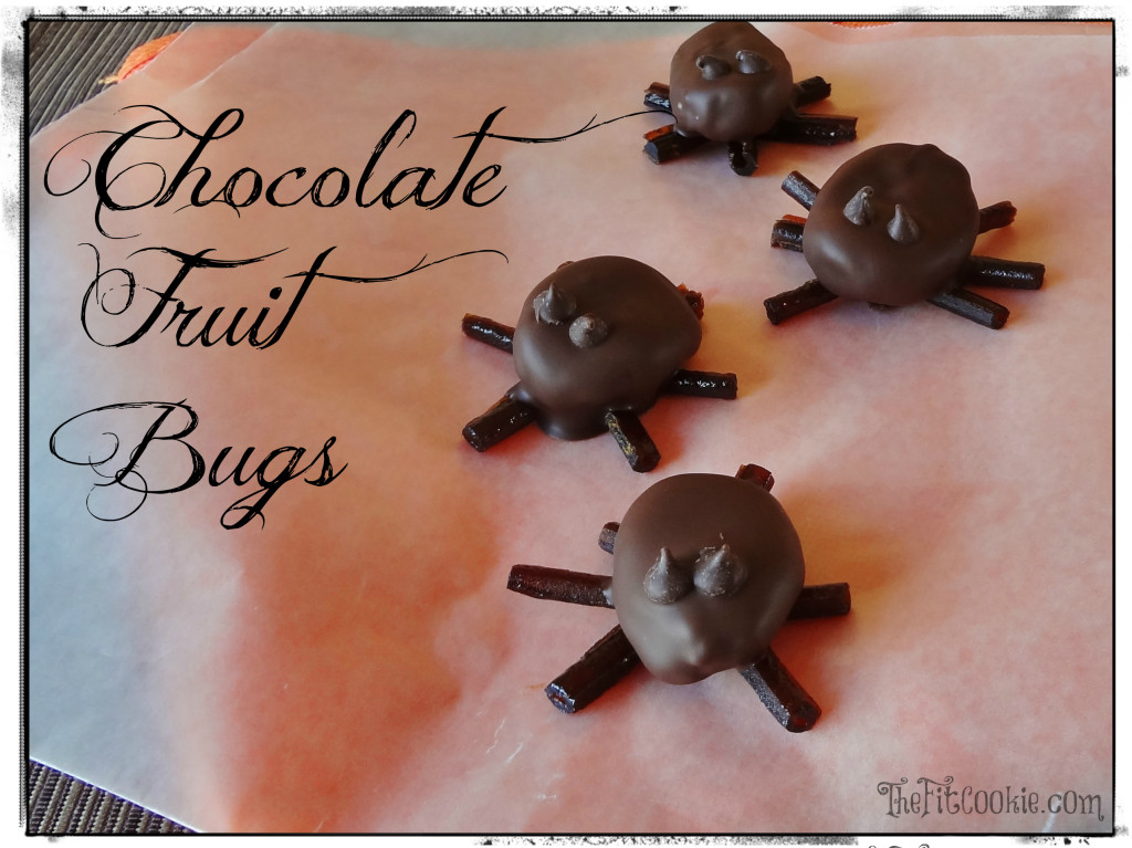 FitCookie-Chocolate-Fruit-Bugs