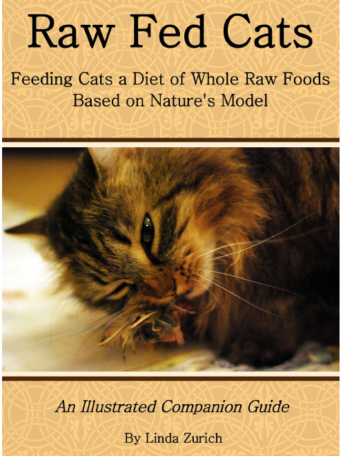 Raw Fed Cats4