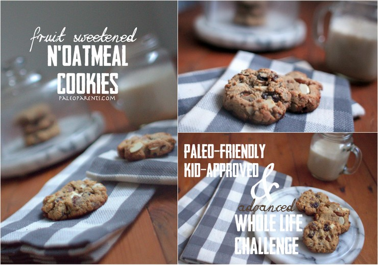 N'Oatmeal Cookies on PaleoParents.com