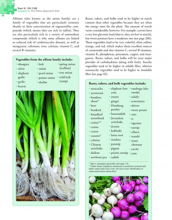 The Paleo Approach Preview Page 202