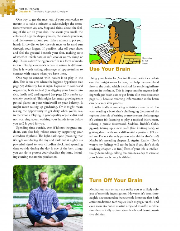 The Paleo Approach Preview Page 250