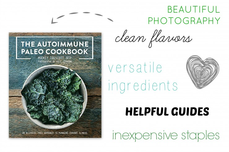 AIP Cookbook Review COLLAGE