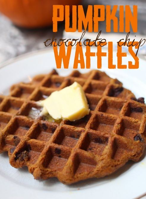 Pumpkin Chocolate Chip Waffles from Paleo Parents in BEST OF PALEO 2014