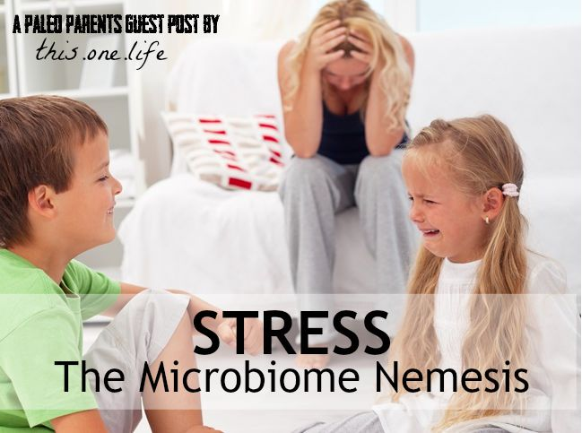 Paleo Parents Guest Post: Stress: The Microbiome Nemesis, This. One. Life.