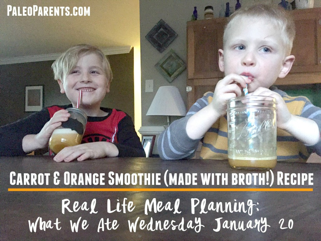 Carrot Orange Smoothie, Real Life Meal Planning, What We Ate Wednesday January 20