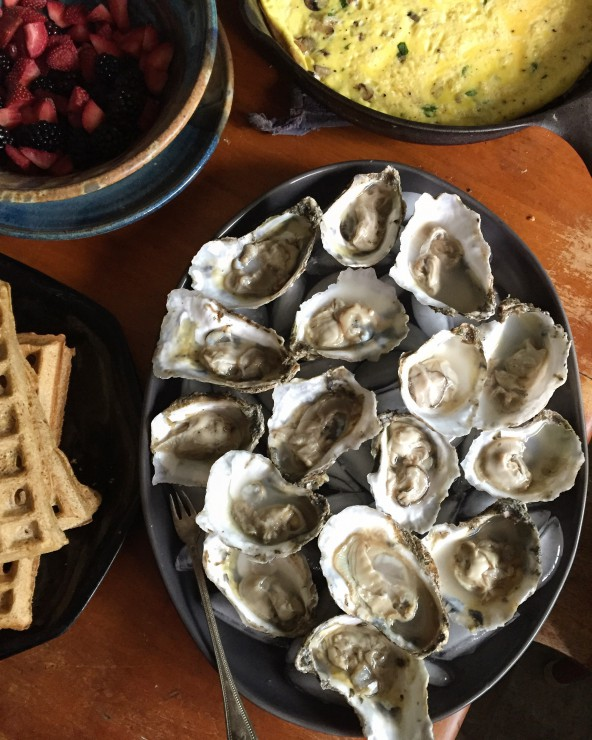 Fresh Oysters on PaleoParents