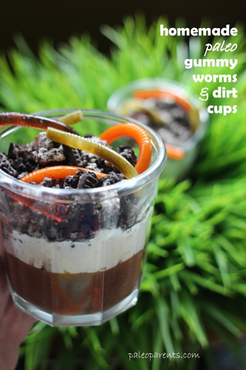 Dirt Cups and Gummy Worms on PaleoParents 04